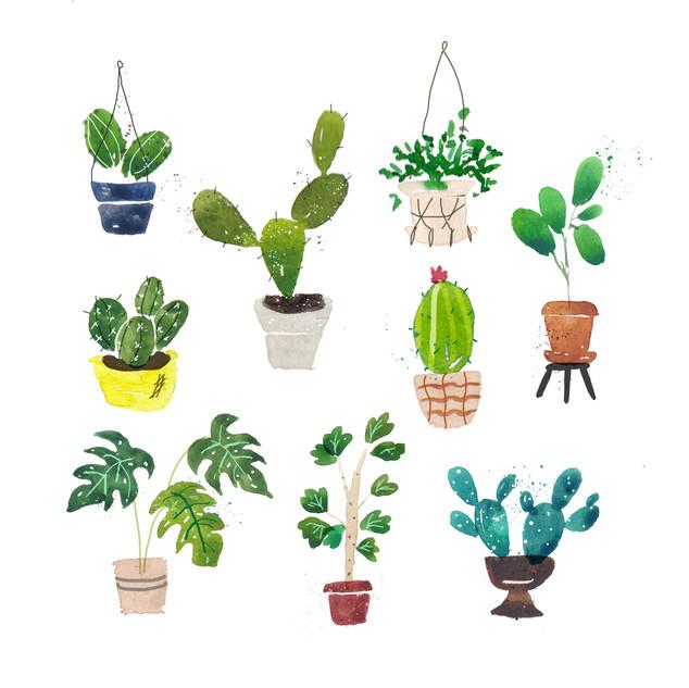 Painterly Plants.jpg