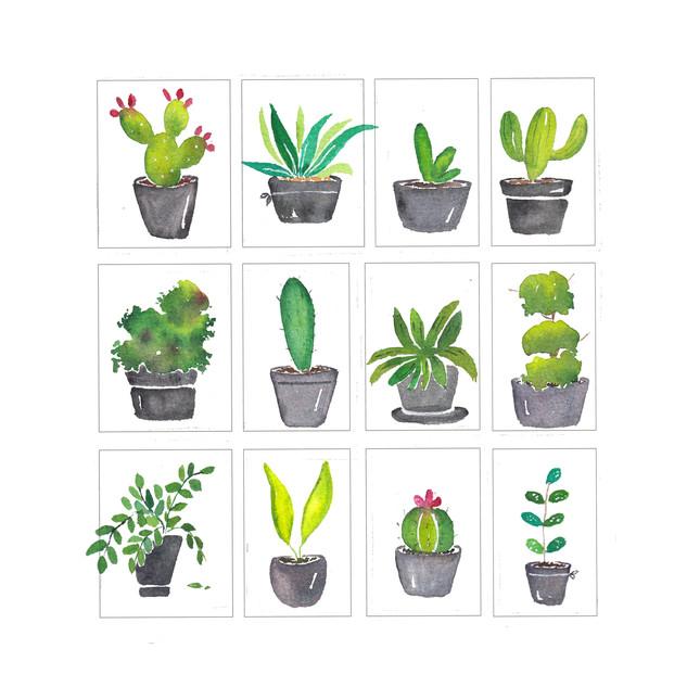 Plant Personalities.jpg