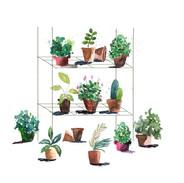 Plants on Stand.jpg