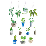 Plants Assorted.png