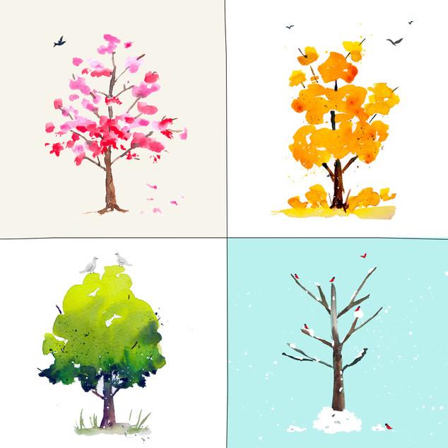 Tree Seasons.jpg