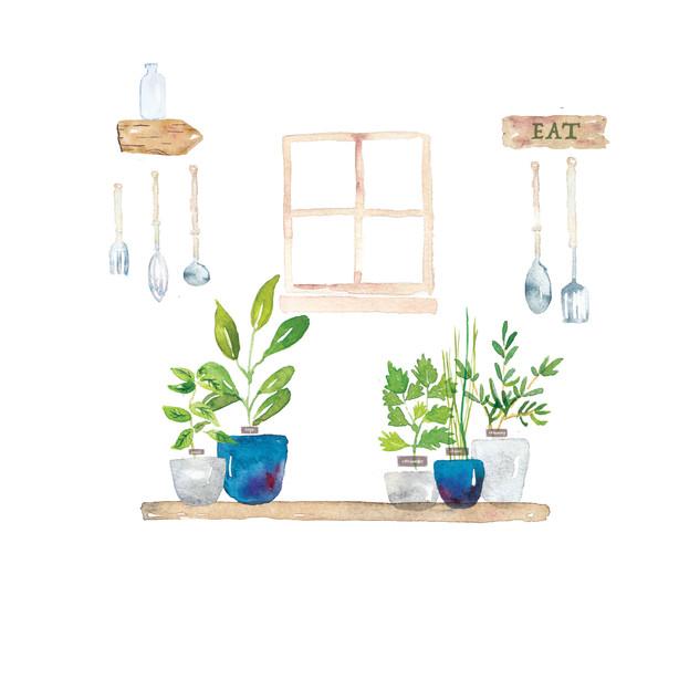 Herbs in Kitchen.jpg