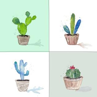 GuestBlog - cacti 4.jpg