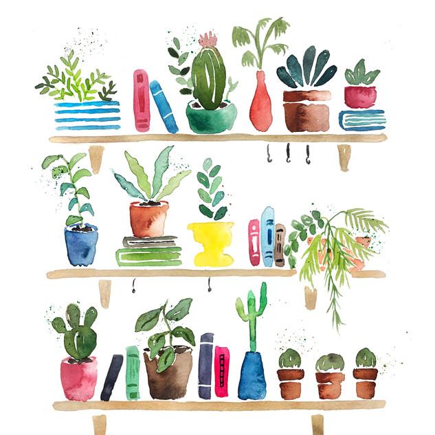 Shelf Plants Rustic.jpg