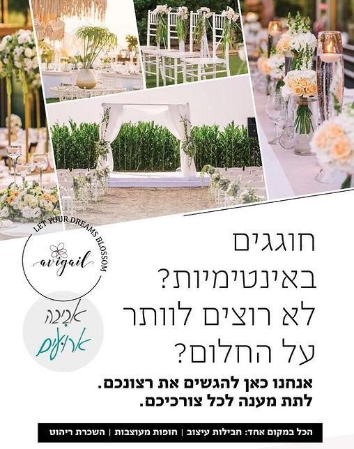 Avigail_Design_Aviva_Flyer3.jpg