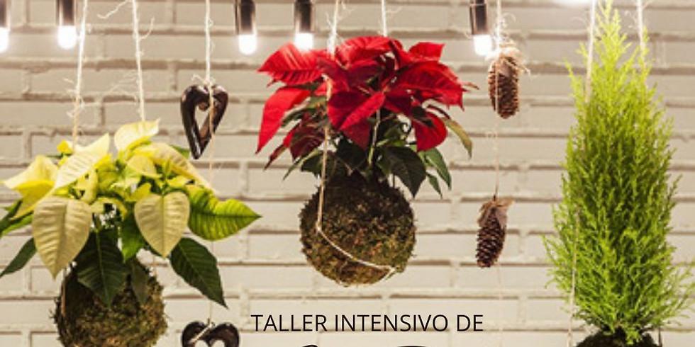 TALLER INTENSIVO DE KOKEDAMAS