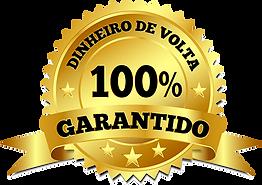 DINHEIRO-DE-VOLTA-Convertido.png