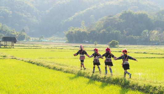 Chiang Rai Hill tribe