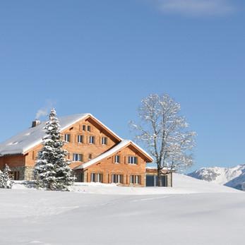 The Stark, Simple Beauties of Winter