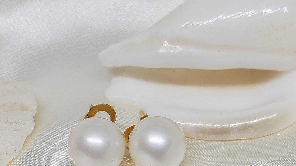 Creamy White Earrings