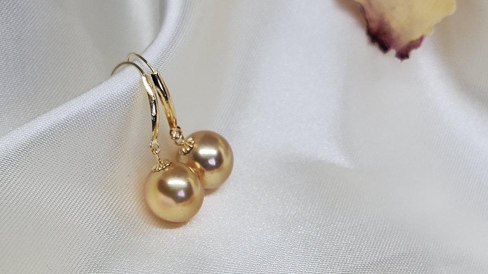 Golden South Sea Pearl Dangling Earrings