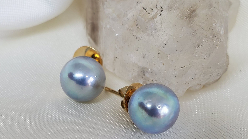 Bluish White Earrings