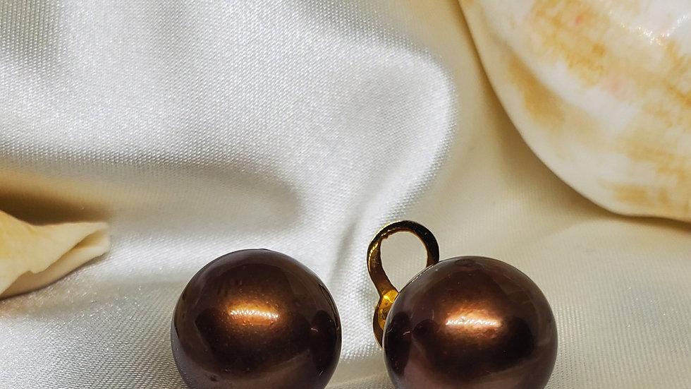 Gorgeous Bronze Earrimg