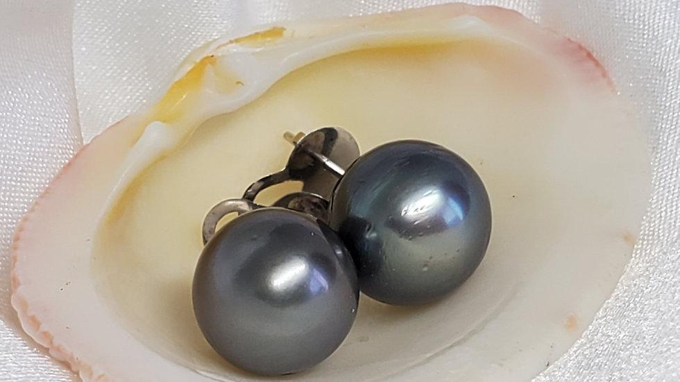 Gray Black Earrings
