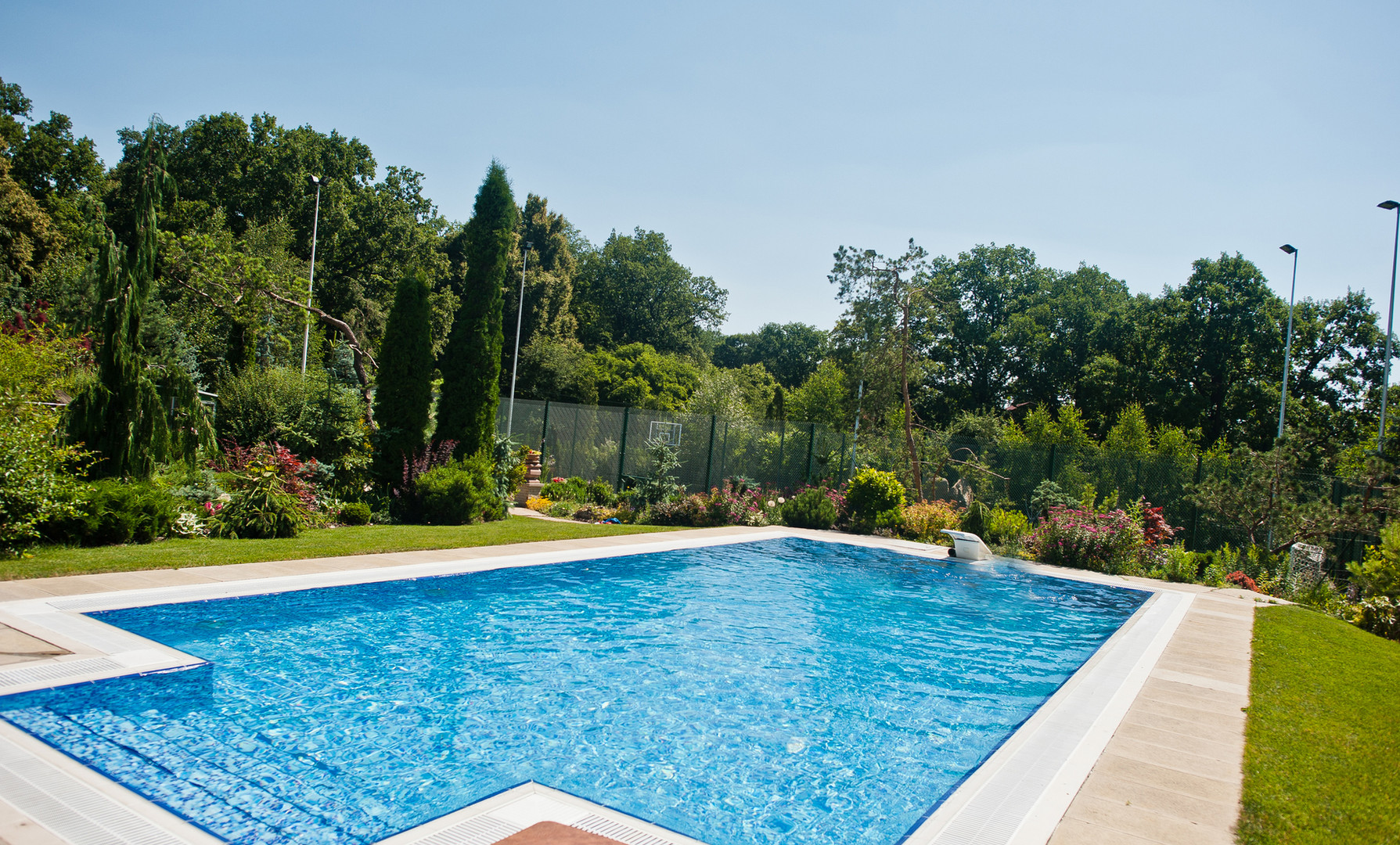 Simple large pool and landscaping