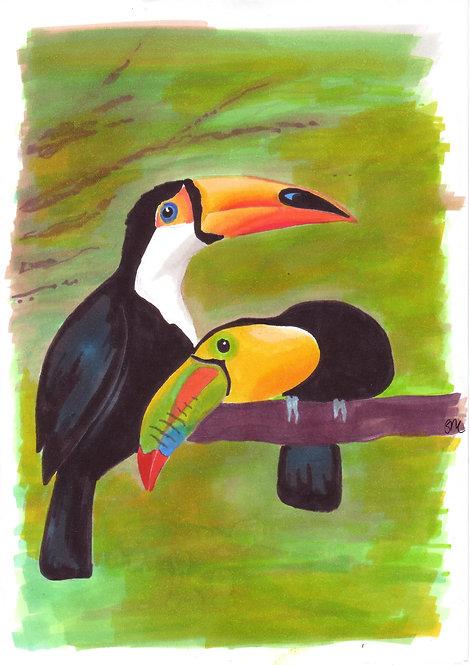 Toucans A4 Print