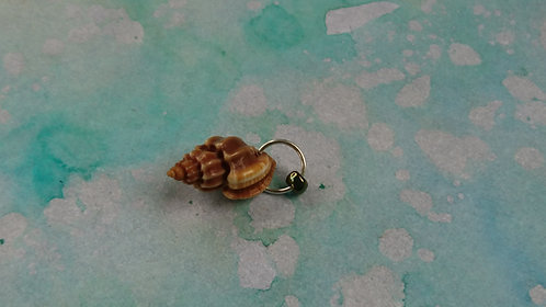 Spiral shell Small charm