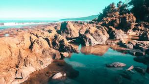 Southern Fiordland - Port Craig Hut
