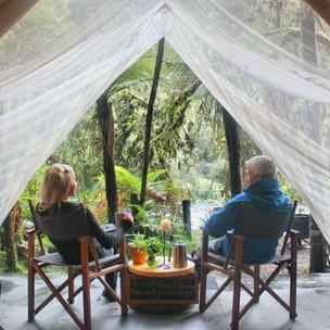 A rainforest escape on the West Coast