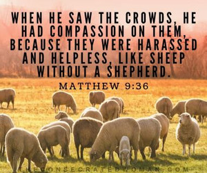 Are you Moved with Compassion?