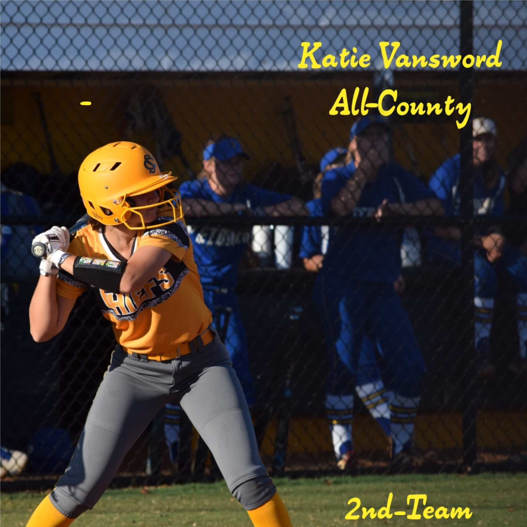 Katie Vansword All County