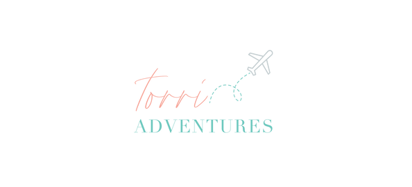 TorriAdventures Logo Plane Banner .png