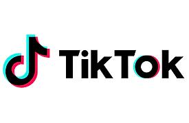tictok log.png