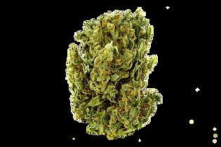 Suver Haze Bud