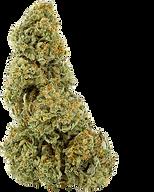 Honolulu Purp Bud