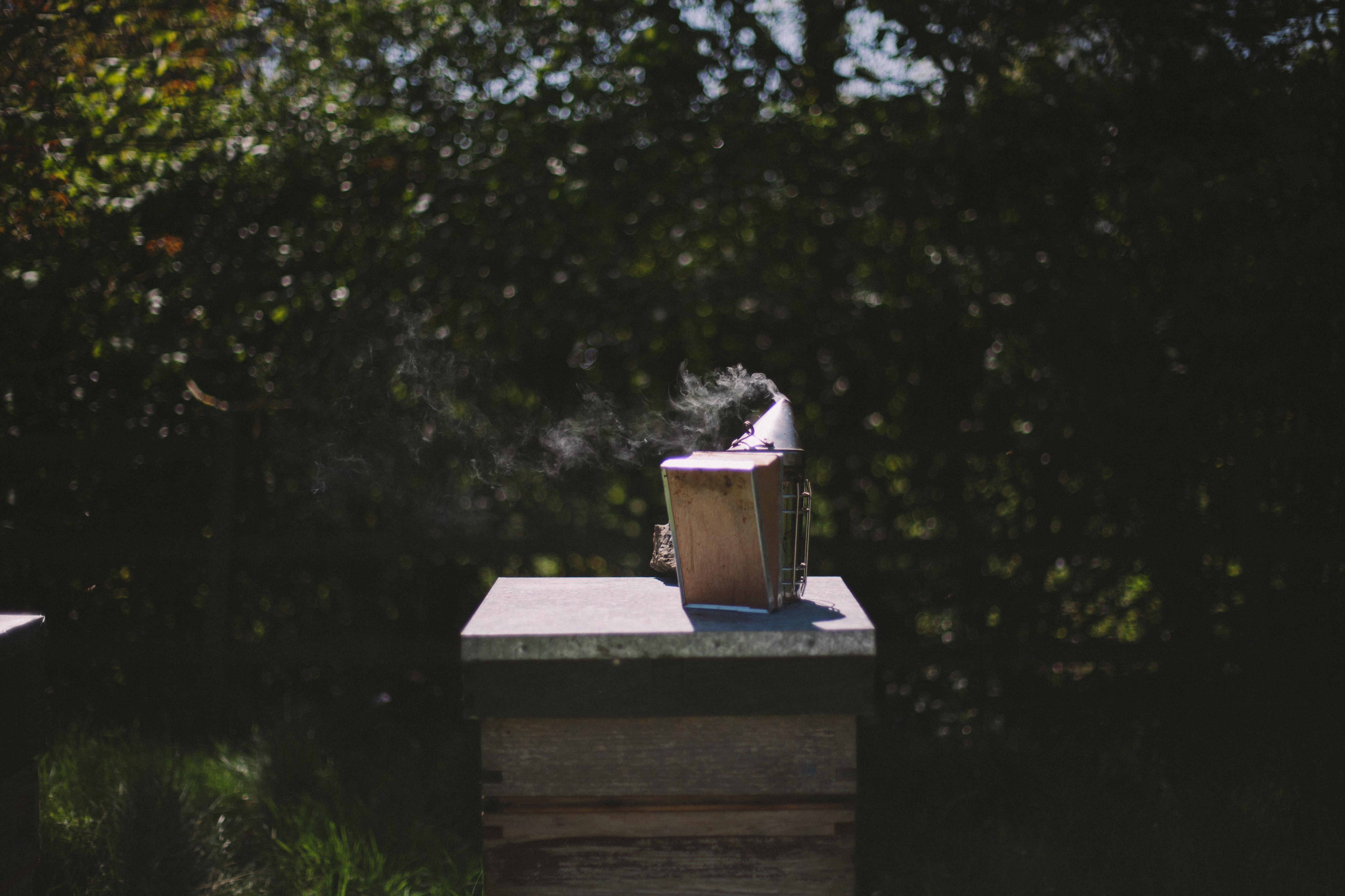 Bee-105