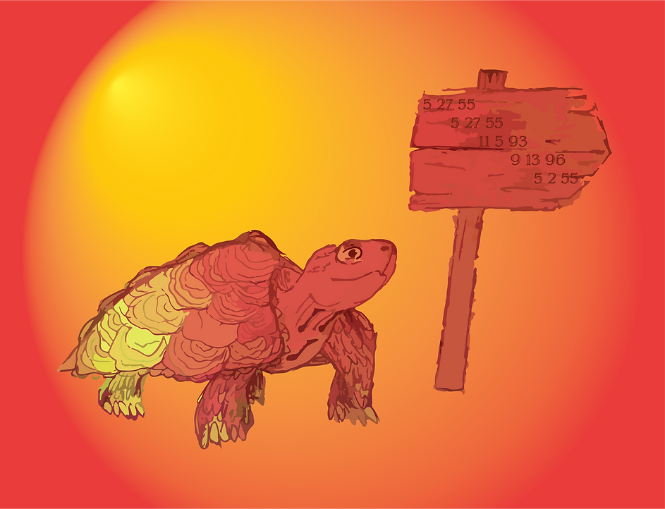Tortoise-Finished1_3x.png
