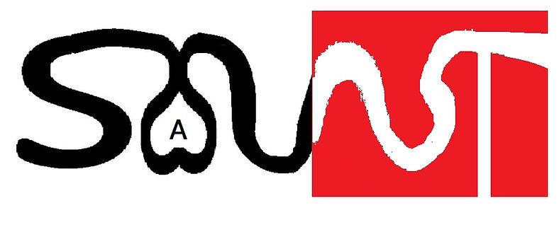 logo-solut.jpg