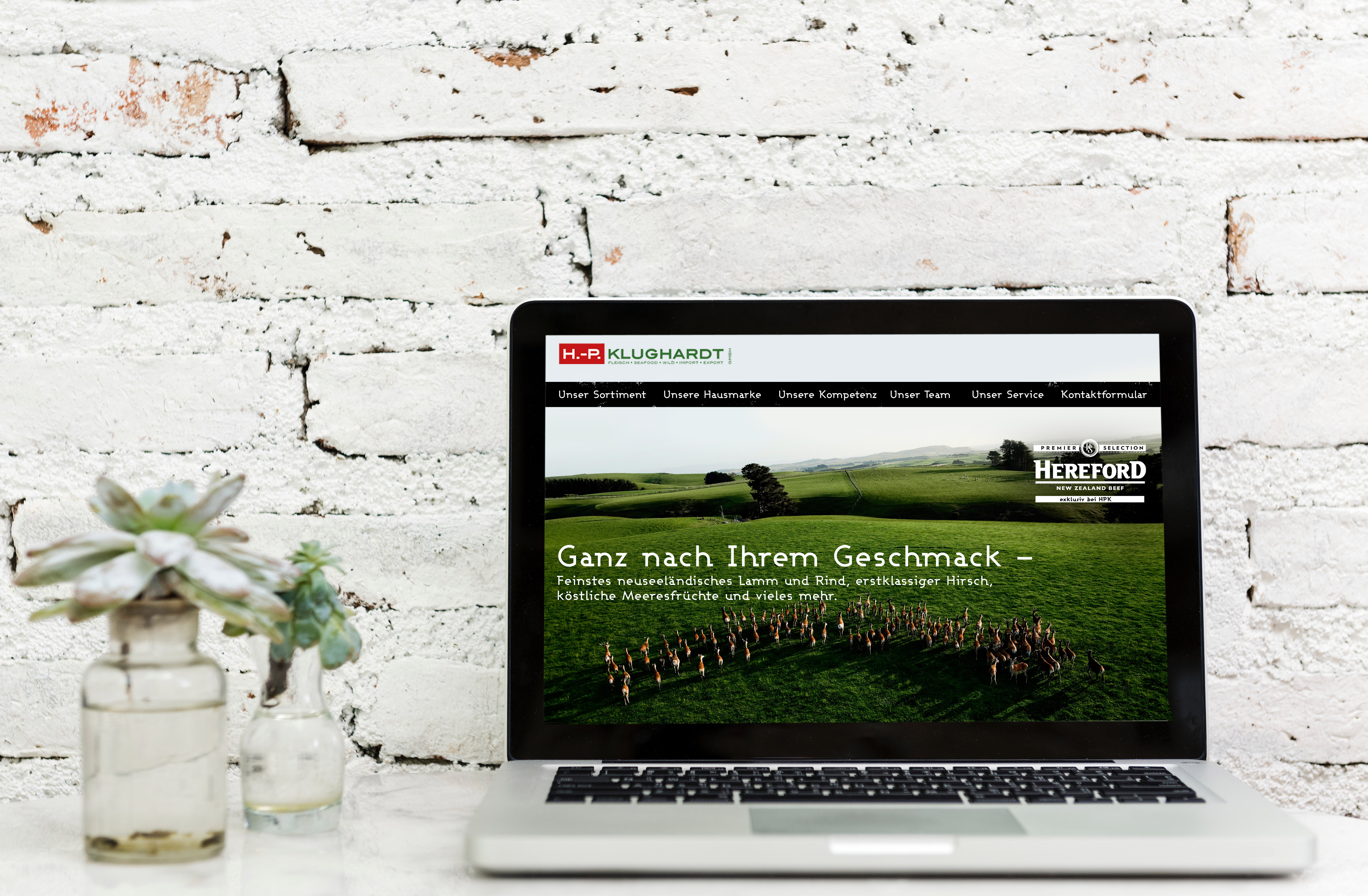 Webseitengestaltung H.-P. Klughardt