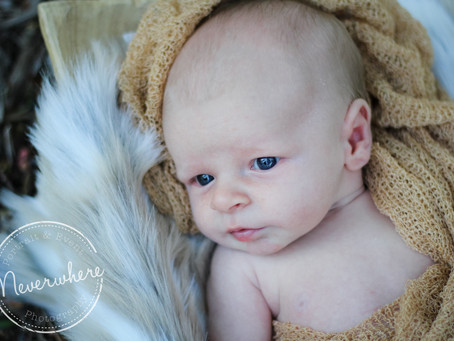 Brody James, Newborn | Brea, CA