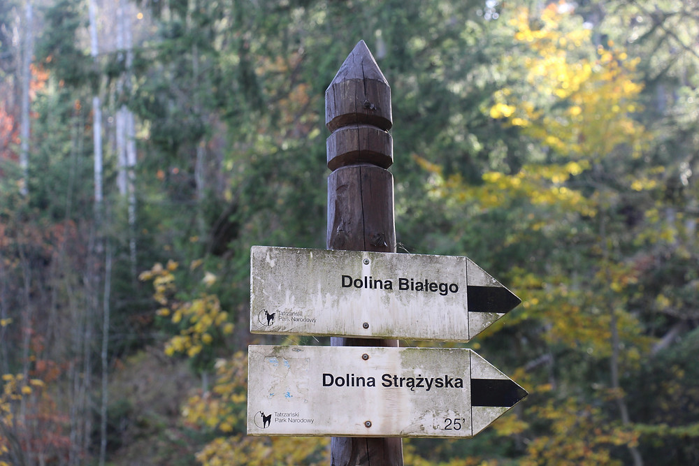 To Dolina Bialego