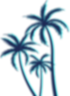 THE_PALM.png