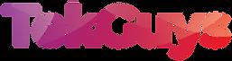Tek Guys_logo-01.png