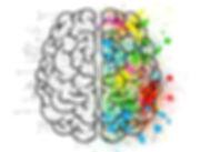 Cerveau kinesiologue