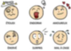 emotions cerveau.jpg