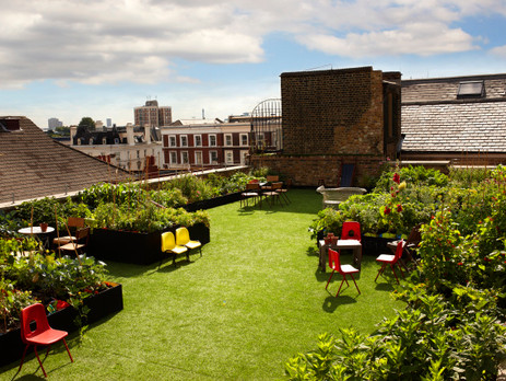 Roof Top in Dalston