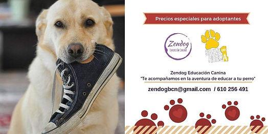 zendog.jpg
