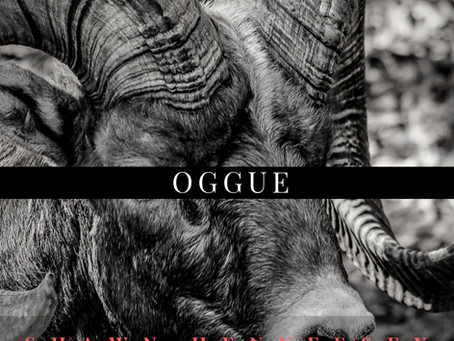 About Oggue