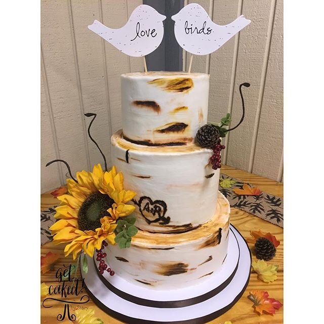 rustic birch inspired cake