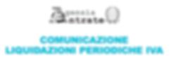 Comunicazione periodica liquidazione IVA