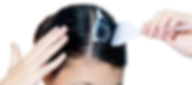 root touch up pic.png
