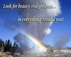 Look for beauty & goodness