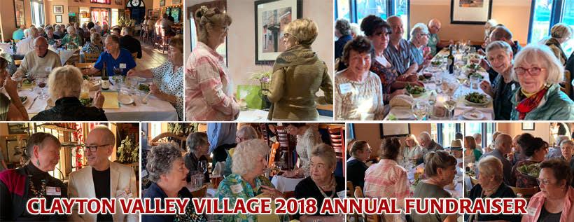 CVV-2018FundRaiser Collage