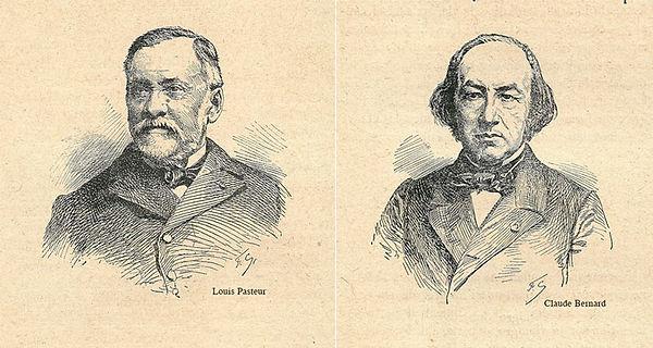 Pasteur&Bernard.jpg