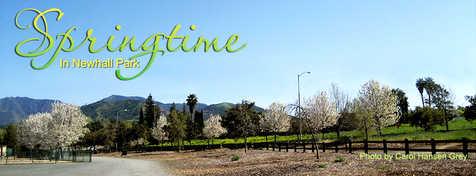 SpringtimeInNewhallPark.jpg