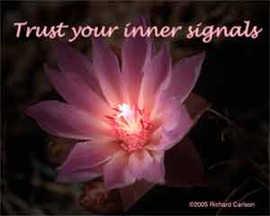 Trust your inner signals